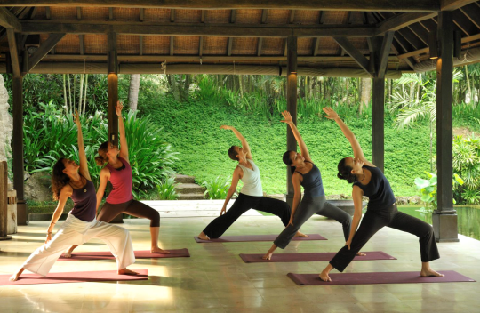 What is Vinyasa Yoga