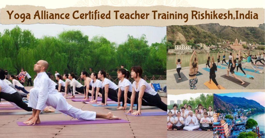 200 YTT in yoga