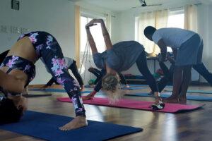 Registered Yoga Teacher