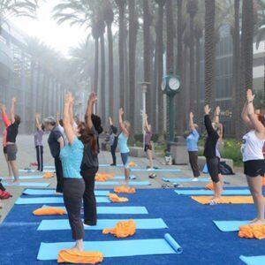 Yoga Teacher Training – In Brief