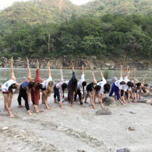 Learn Yoga In India